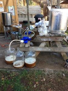 So the KBC 505 begins fermentation